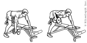 Back Dumbbell Exercises