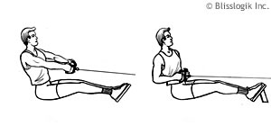 Back Strength Exercises