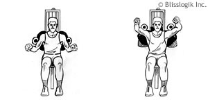 Shoulders Strength Exercises